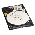 WESTERN DIGITAL 2.5インチ内蔵HDD 250GB Serial-ATA/150 5400rpm 12.0ms 8MB WD2500BEVS